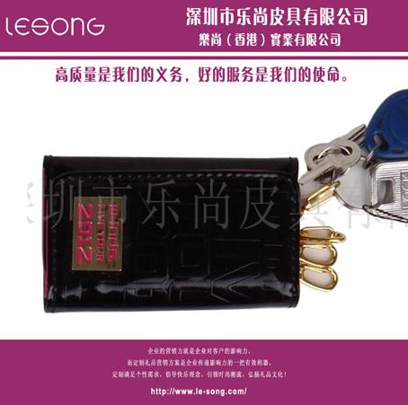 LS1217钥匙包